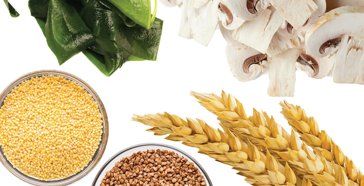 Different Sources of Beta Glucan